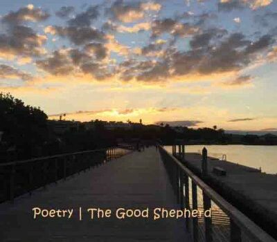 The Good Shepherd – a poem by Angela Coleman